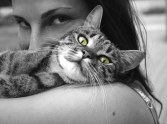 How Much Does Living with a Cat Increase Your Risk of Schizophrenia? article